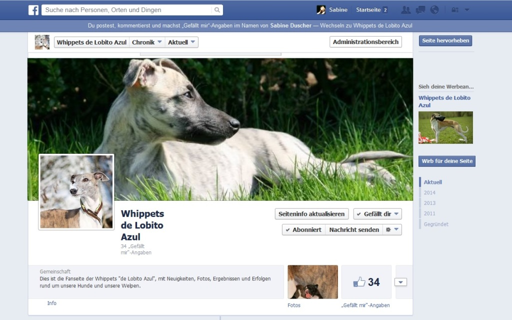 FB Whippets de Lobito Azul