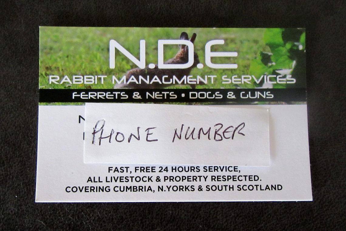 Rabbit Management Services